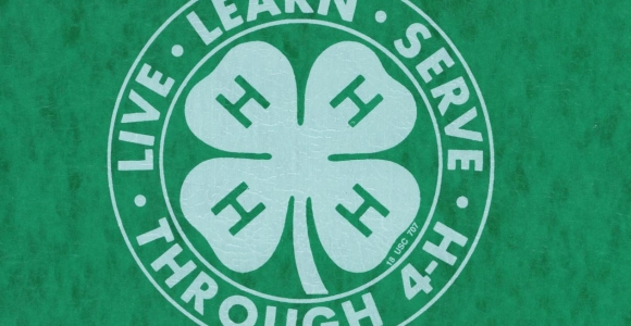 Its Ohio 4-H Week! March 5- 11